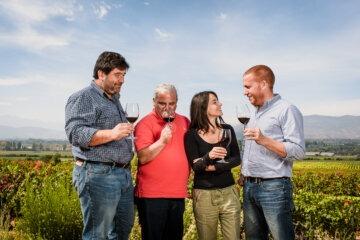 vinos-emiliana